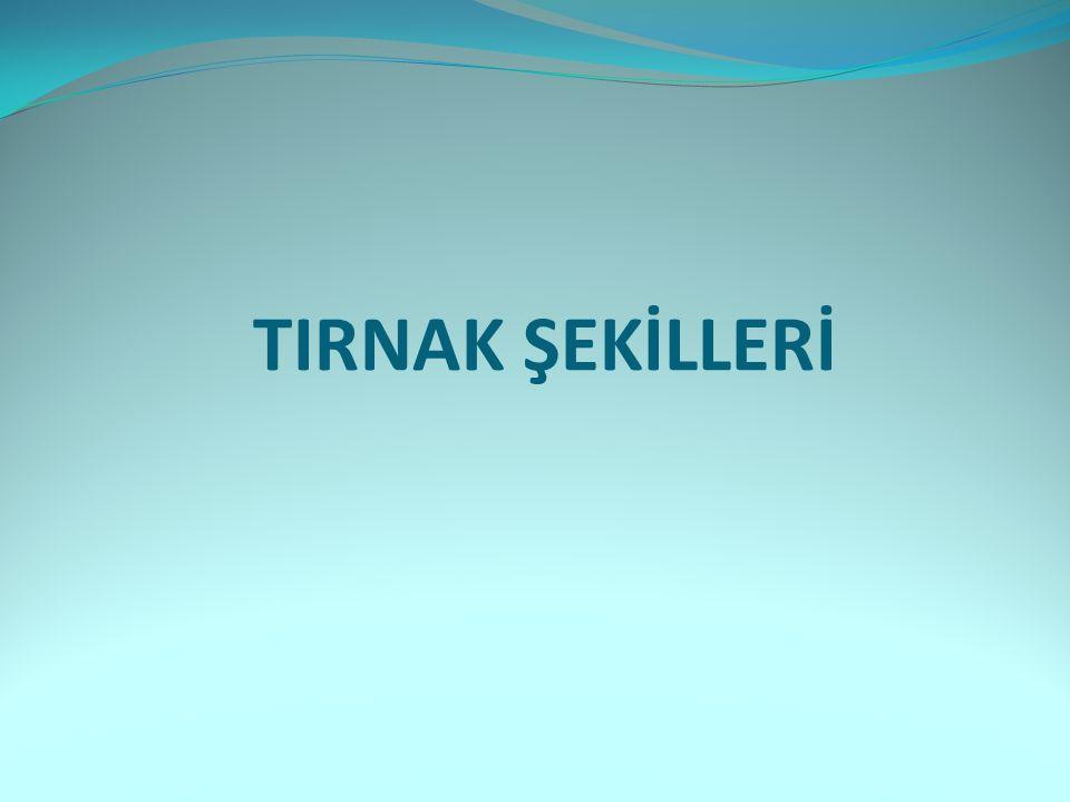 TIRNAK ŞEKİLLERİ