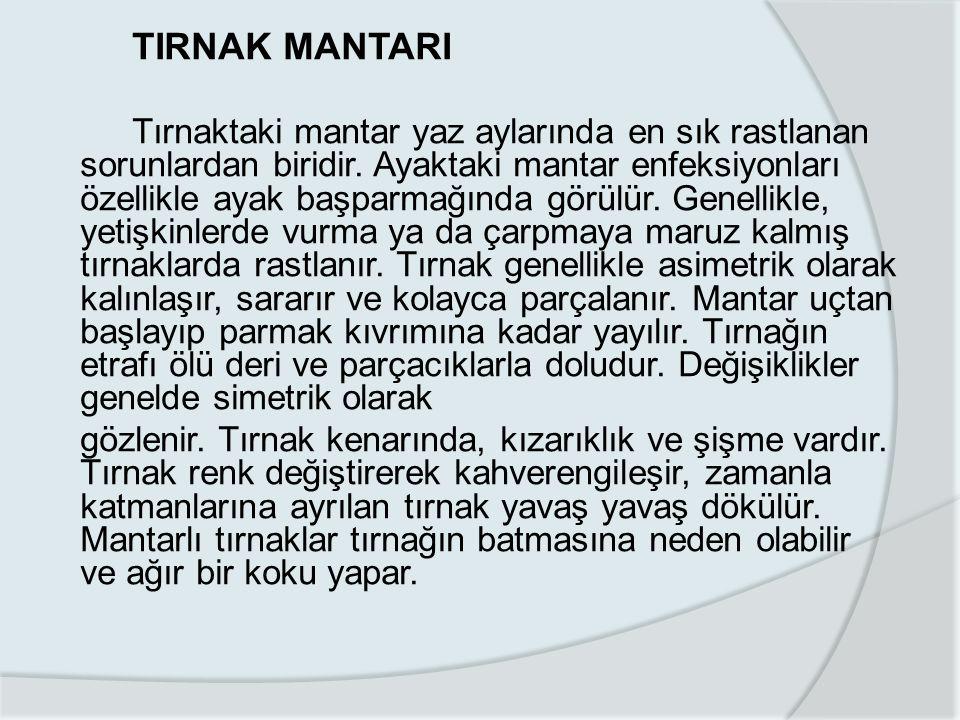 TIRNAK MANTARI