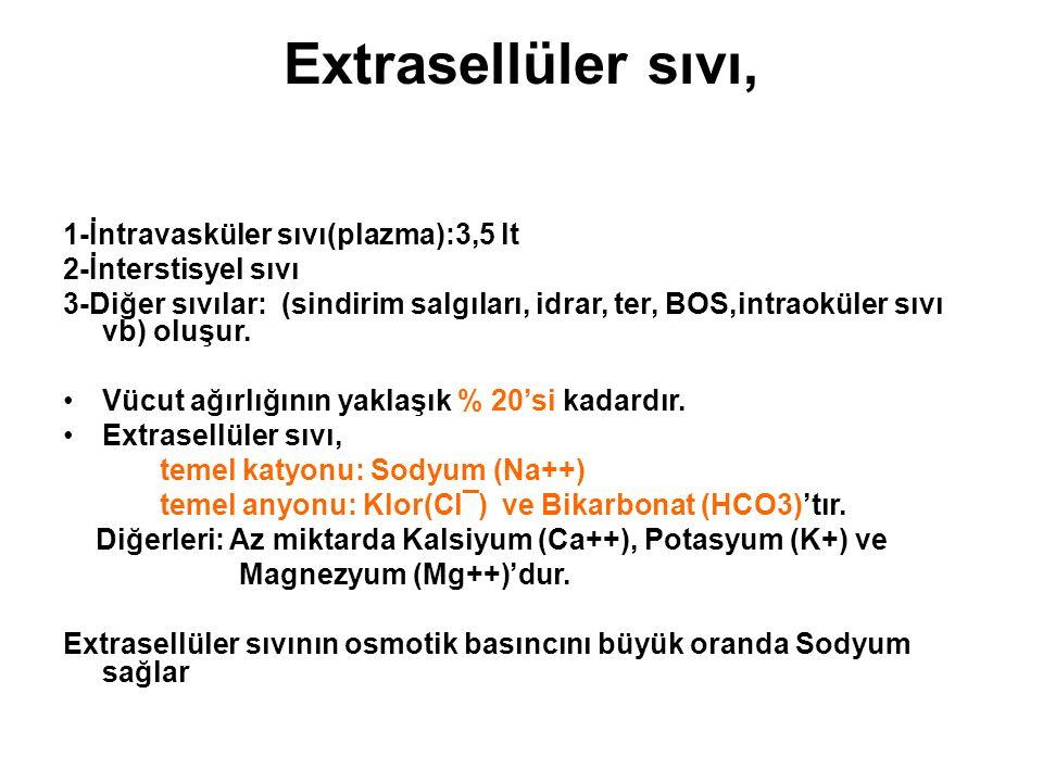 Extrasellüler sıvı, 1-İntravasküler sıvı(plazma):3,5 lt