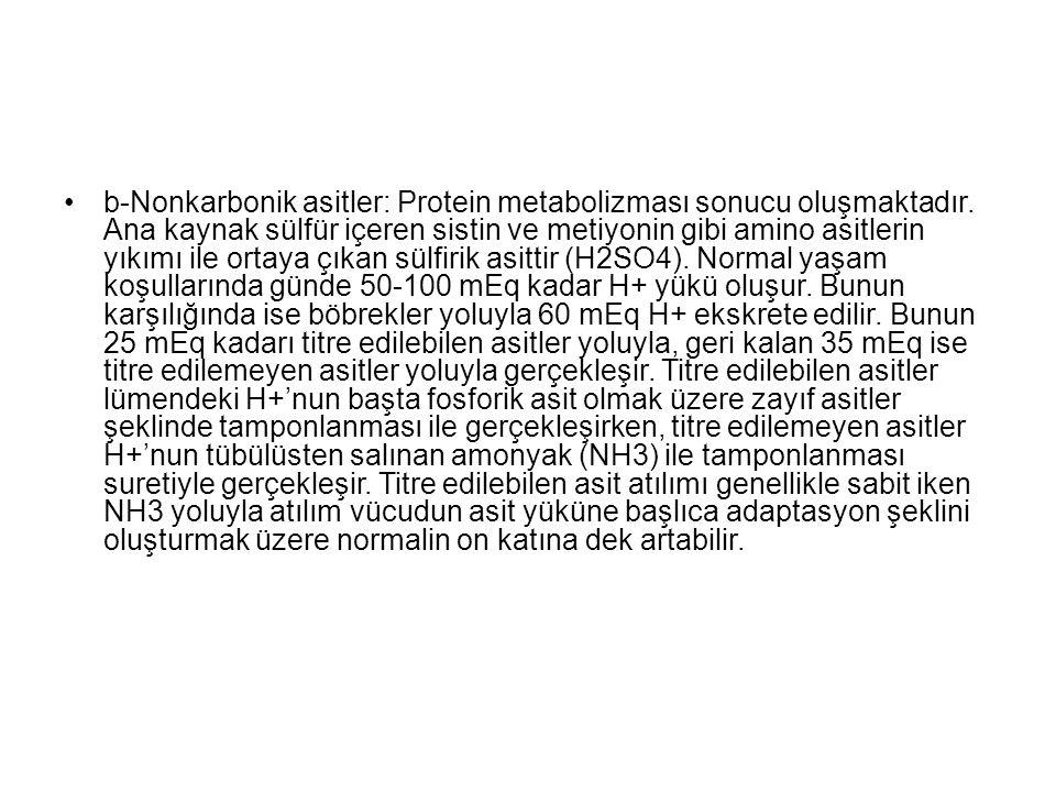 b-Nonkarbonik asitler: Protein metabolizması sonucu oluşmaktadır