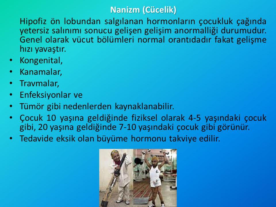 Nanizm (Cücelik)