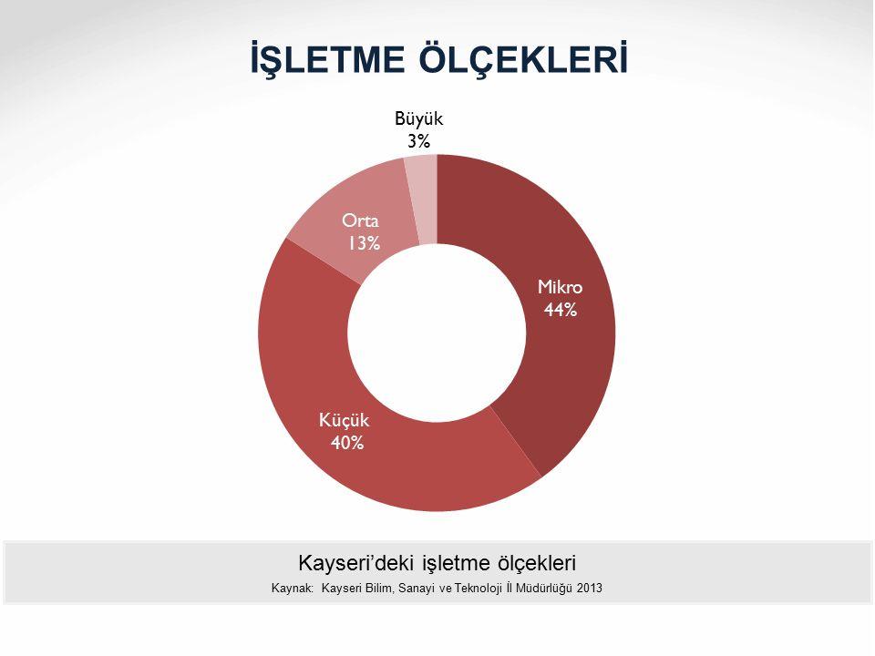 İŞLETME ÖLÇEKLERİ Kayseri'deki işletme ölçekleri
