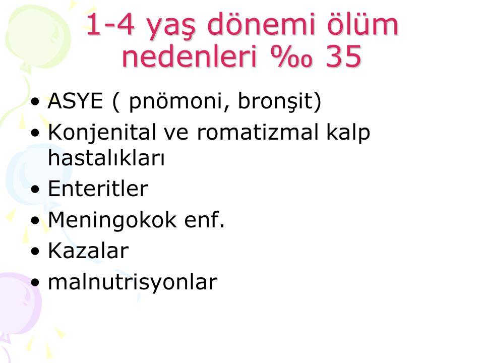 1-4 yaş dönemi ölüm nedenleri ‰ 35