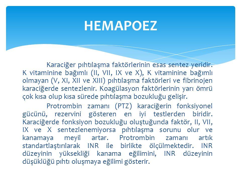 HEMAPOEZ