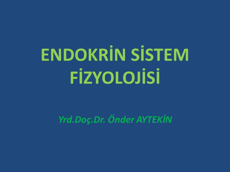 ENDOKRİN SİSTEM FİZYOLOJİSİ