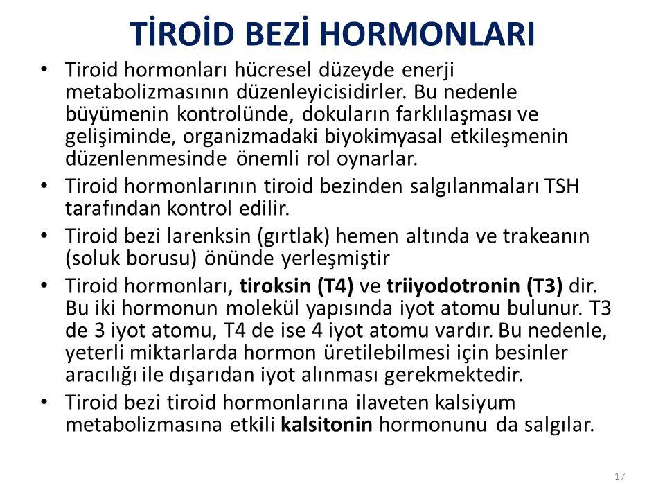 TİROİD BEZİ HORMONLARI