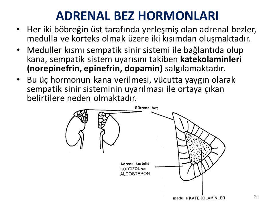 ADRENAL BEZ HORMONLARI
