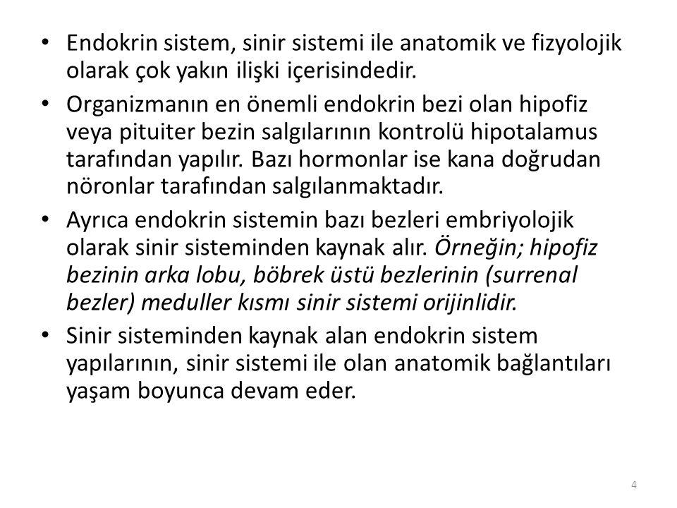 Endokrin sistem, sinir sistemi ile anatomik ve fizyolojik olarak çok yakın ilişki içerisindedir.