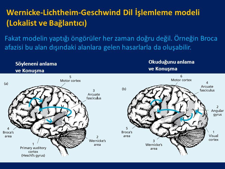Wernicke-Lichtheim-Geschwind Dil İşlemleme modeli (Lokalist ve Bağlantıcı)