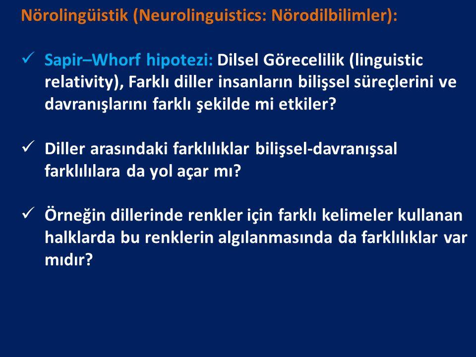 Nörolingüistik (Neurolinguistics: Nörodilbilimler):