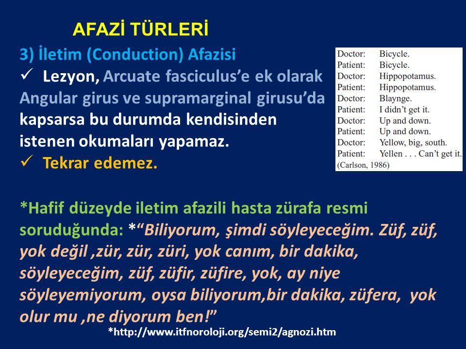 3) İletim (Conduction) Afazisi Lezyon, Arcuate fasciculus'e ek olarak