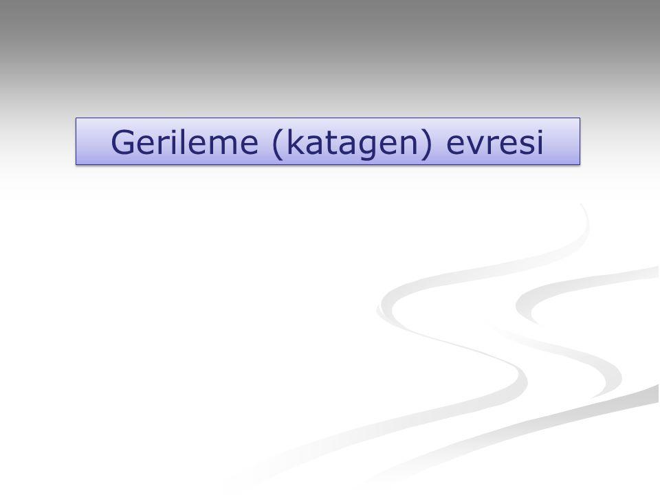 Gerileme (katagen) evresi