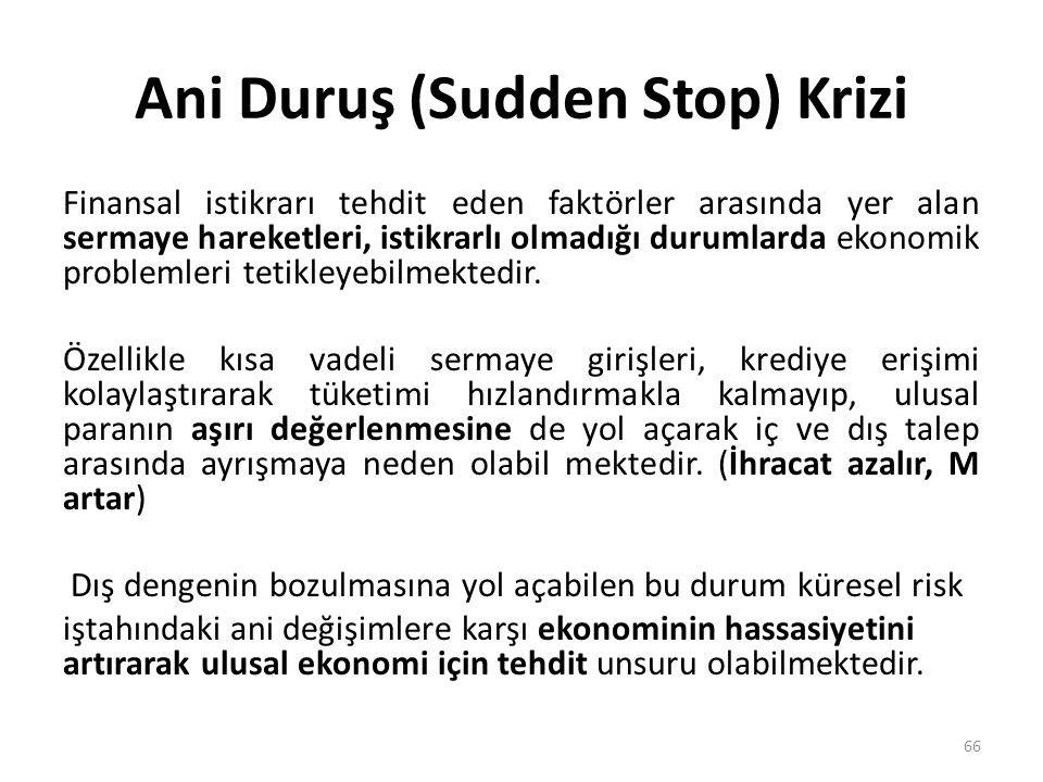 Ani Duruş (Sudden Stop) Krizi