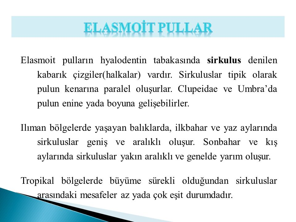 ELASMOİT PULLAR