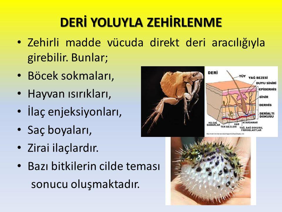 DERİ YOLUYLA ZEHİRLENME