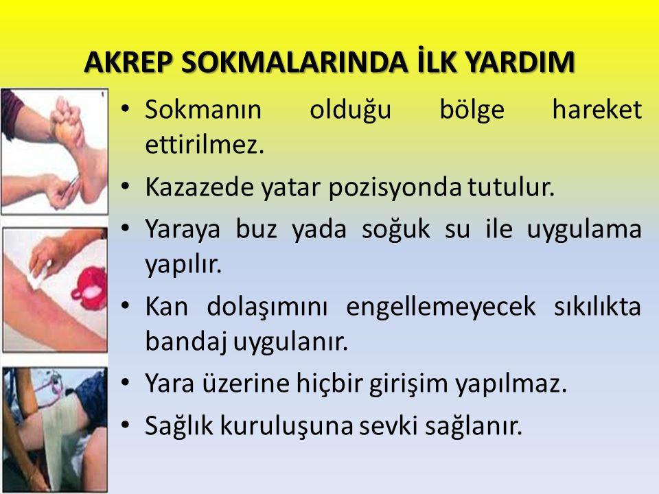 AKREP SOKMALARINDA İLK YARDIM