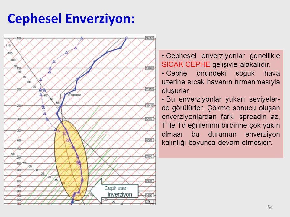 Cephesel Enverziyon: Cephesel enverziyonlar genellikle SICAK CEPHE gelişiyle alakalıdır.