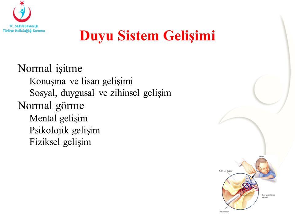 Duyu Sistem Gelişimi Normal işitme Normal görme
