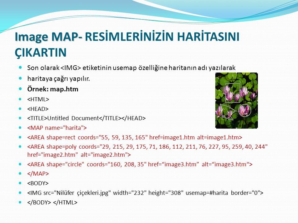 Image MAP- RESİMLERİNİZİN HARİTASINI ÇIKARTIN