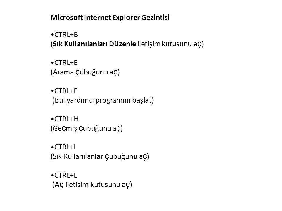 Microsoft Internet Explorer Gezintisi