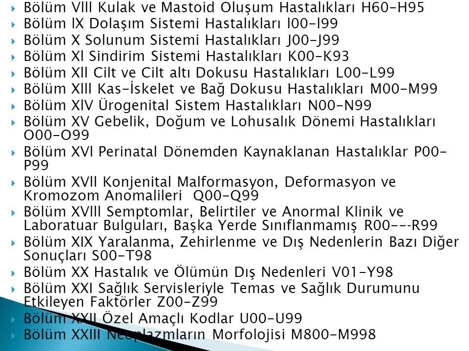 Gökçekin dinozorları Trabzona gönderildi 50