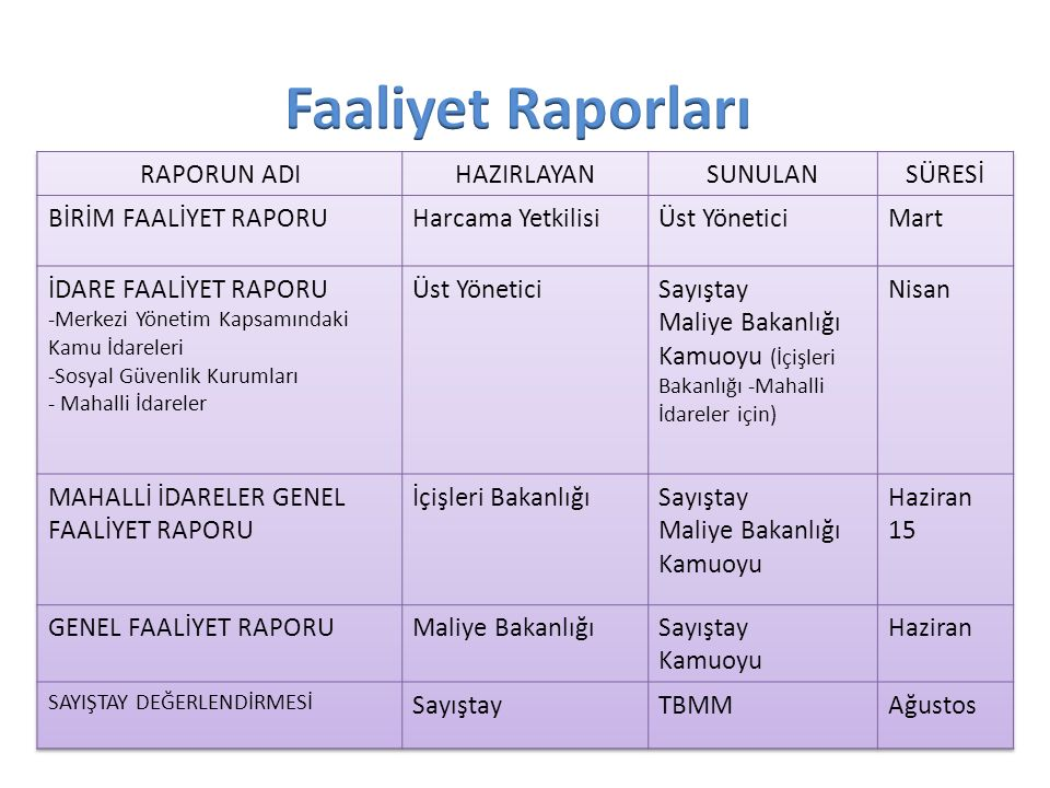 IV. Faaliyet Raporları ve Kesin Hesap