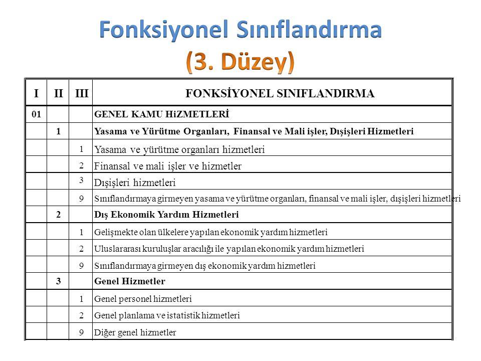 Fonksiyonel Sınıflandırma (3. Düzey)