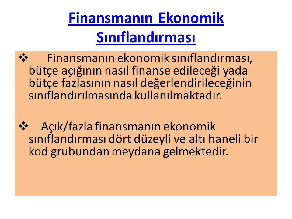 Finansmanın Ekonomik Sınıflandırması