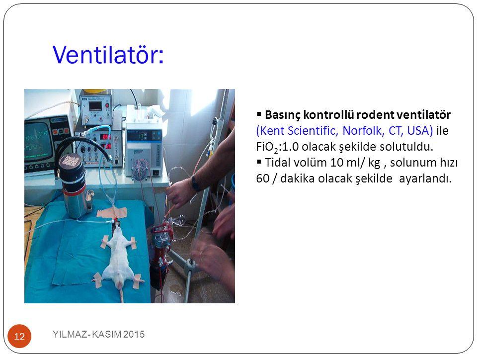 Ventilatör: Basınç kontrollü rodent ventilatör (Kent Scientific, Norfolk, CT, USA) ile FiO2:1.0 olacak şekilde solutuldu.
