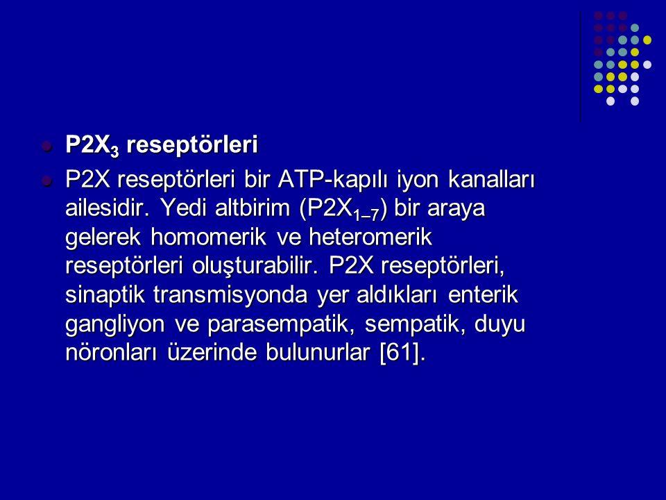 P2X3 reseptörleri