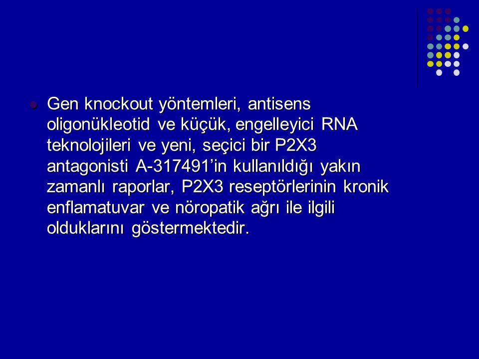 Gen knockout yöntemleri, antisens oligonükleotid ve küçük, engelleyici RNA teknolojileri ve yeni, seçici bir P2X3 antagonisti A-317491'in kullanıldığı yakın zamanlı raporlar, P2X3 reseptörlerinin kronik enflamatuvar ve nöropatik ağrı ile ilgili olduklarını göstermektedir.