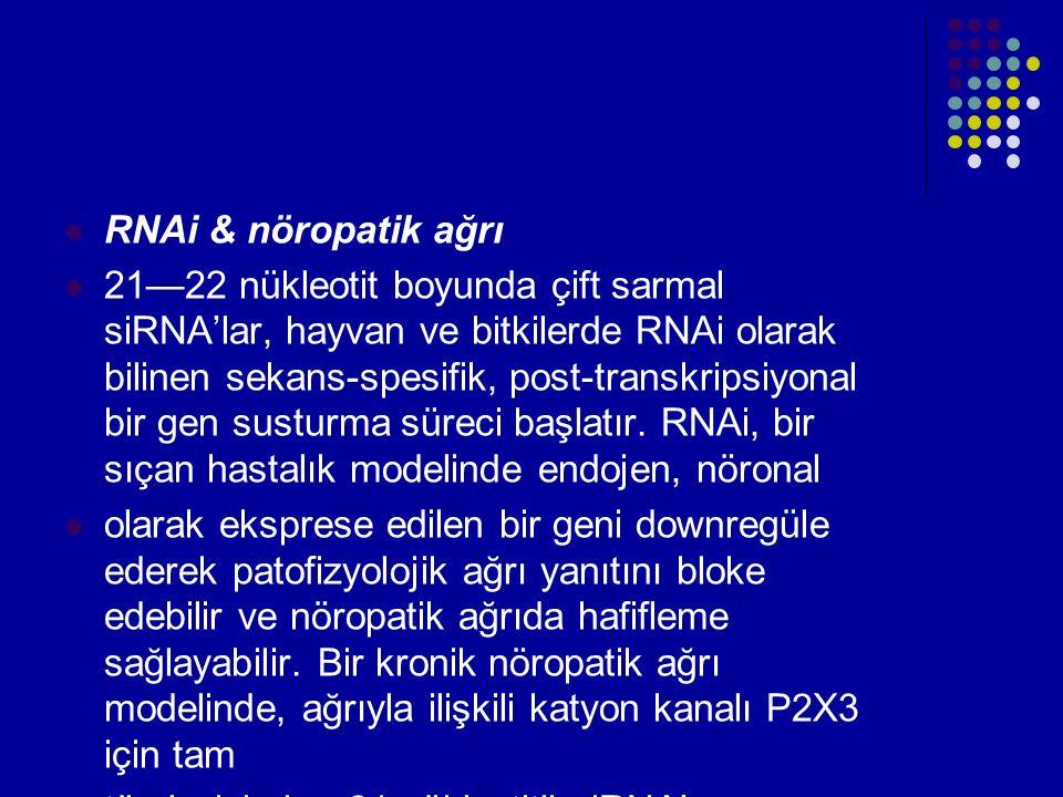 RNAi & nöropatik ağrı