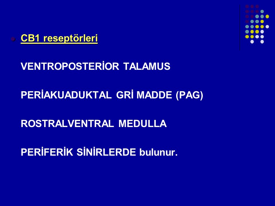 CB1 reseptörleri VENTROPOSTERİOR TALAMUS. PERİAKUADUKTAL GRİ MADDE (PAG) ROSTRALVENTRAL MEDULLA.