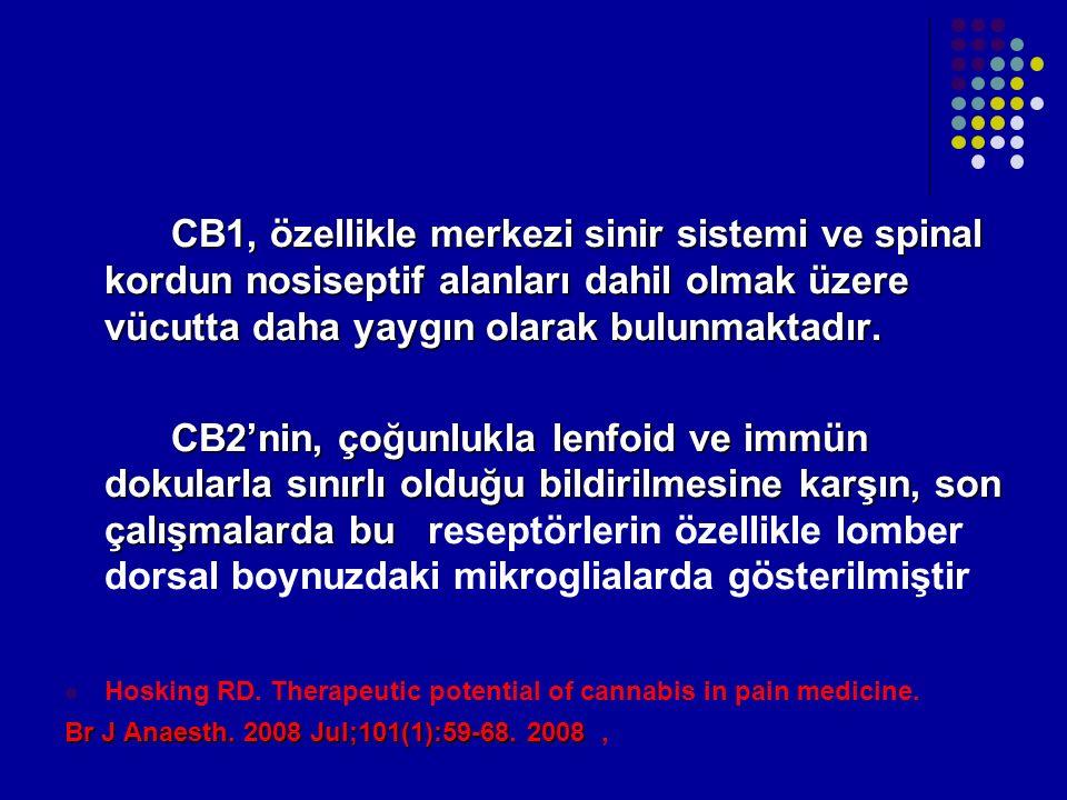 CB1, özellikle merkezi sinir sistemi ve spinal kordun nosiseptif alanları dahil olmak üzere vücutta daha yaygın olarak bulunmaktadır.
