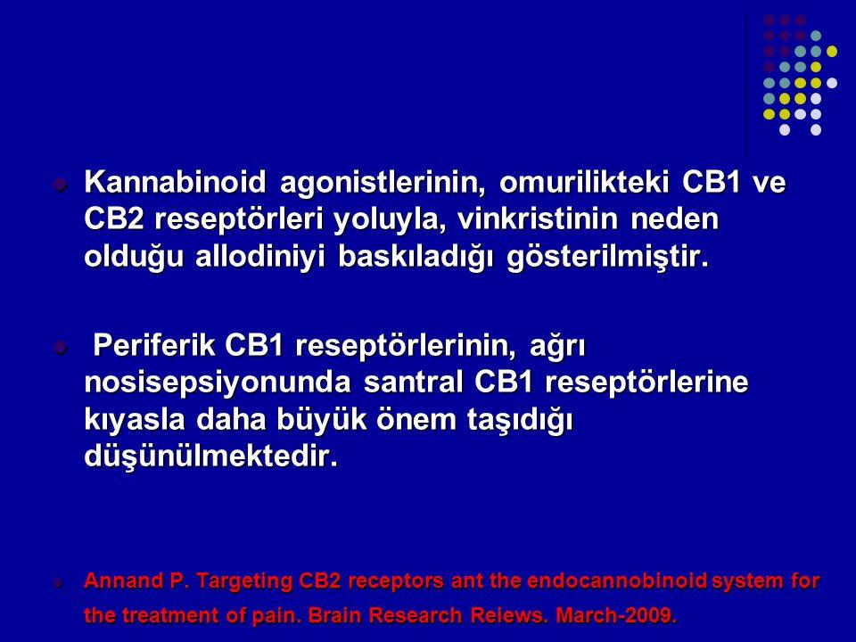 Kannabinoid agonistlerinin, omurilikteki CB1 ve CB2 reseptörleri yoluyla, vinkristinin neden olduğu allodiniyi baskıladığı gösterilmiştir.