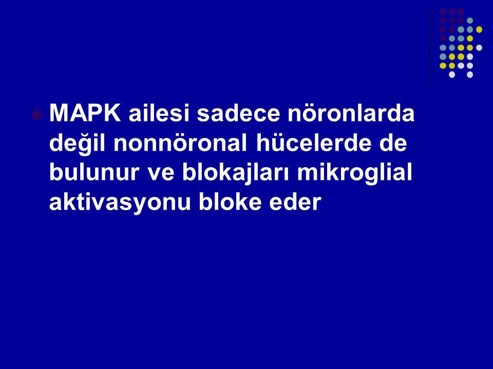 MAPK ailesi sadece nöronlarda değil nonnöronal hücelerde de bulunur ve blokajları mikroglial aktivasyonu bloke eder