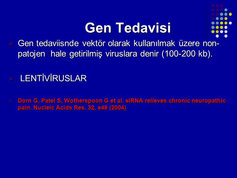 Gen Tedavisi Gen tedaviisnde vektör olarak kullanılmak üzere non-patojen hale getirilmiş viruslara denir (100-200 kb).