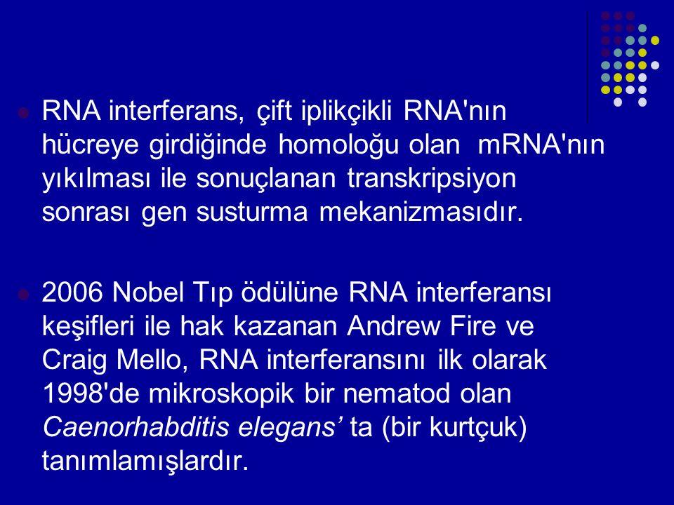 RNA interferans, çift iplikçikli RNA nın hücreye girdiğinde homoloğu olan mRNA nın yıkılması ile sonuçlanan transkripsiyon sonrası gen susturma mekanizmasıdır.