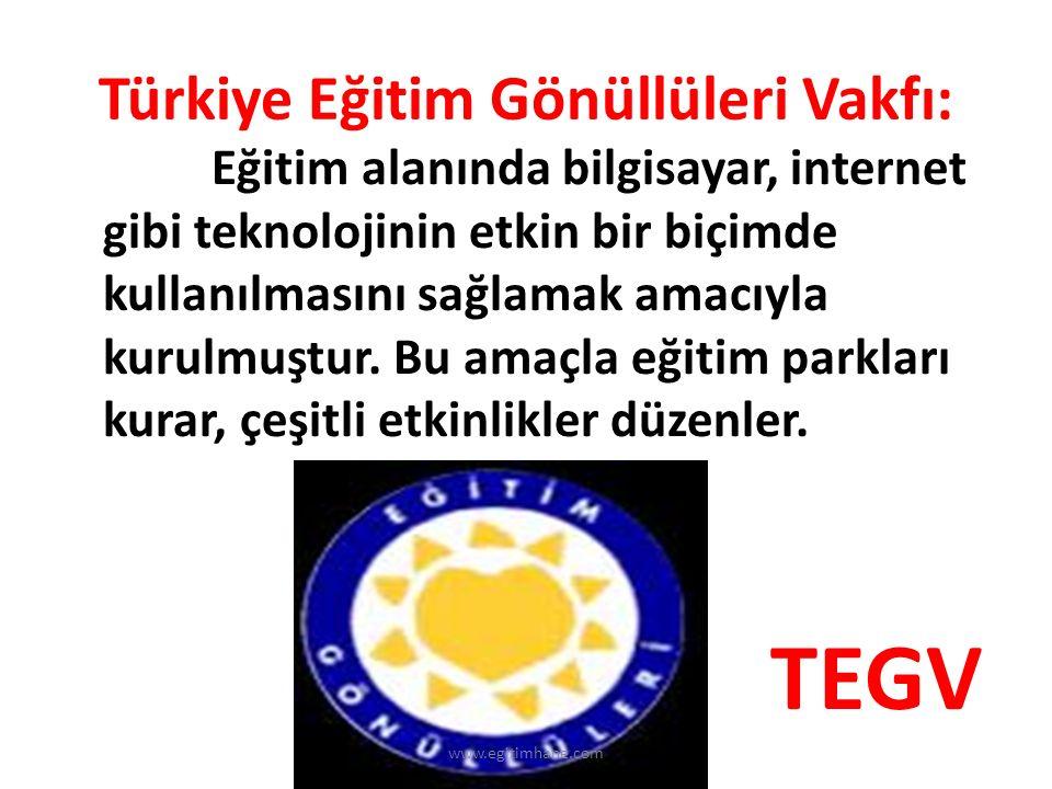Türkiye Eğitim Gönüllüleri Vakfı:
