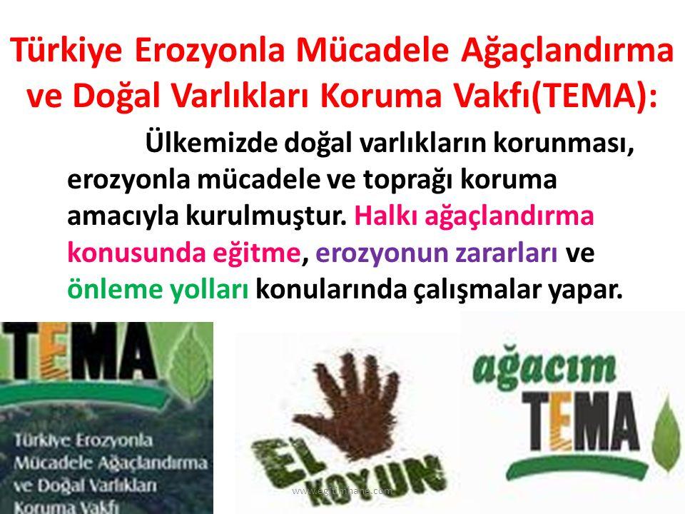 Türkiye Erozyonla Mücadele Ağaçlandırma ve Doğal Varlıkları Koruma Vakfı(TEMA):
