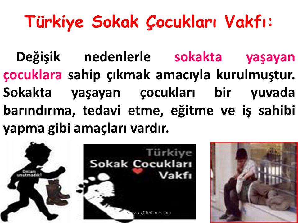 Türkiye Sokak Çocukları Vakfı: