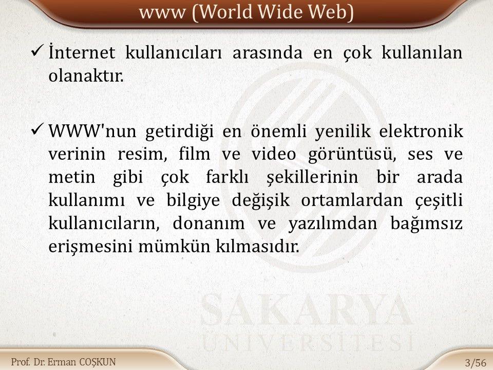 www (World Wide Web) İnternet kullanıcıları arasında en çok kullanılan olanaktır.