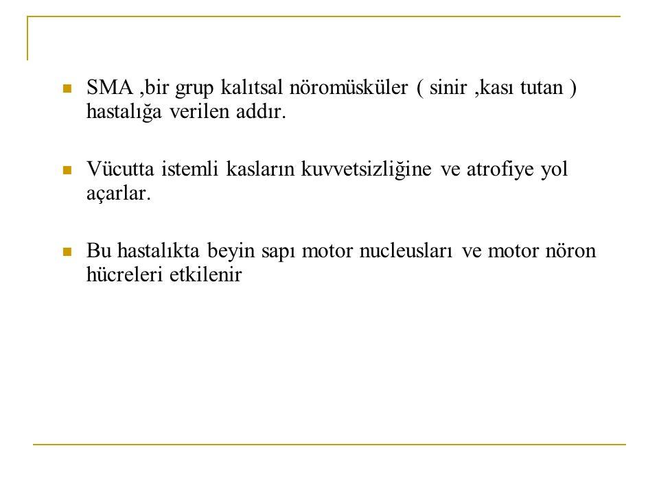 SMA ,bir grup kalıtsal nöromüsküler ( sinir ,kası tutan ) hastalığa verilen addır.