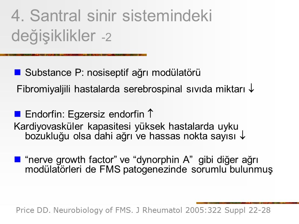 4. Santral sinir sistemindeki değişiklikler -2
