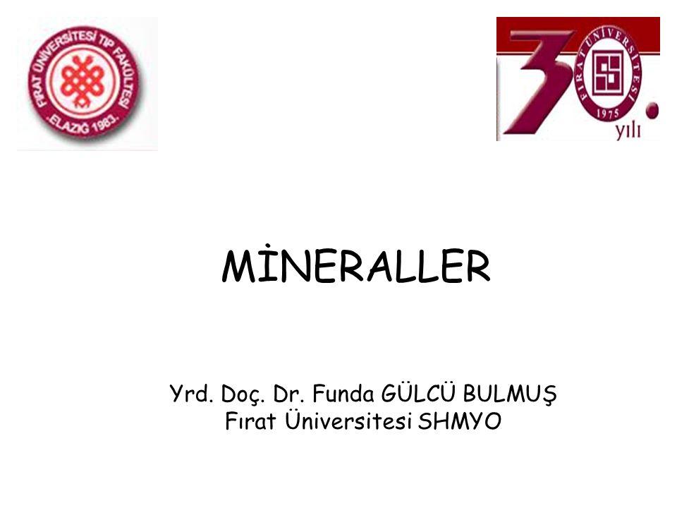 MİNERALLER Yrd. Doç. Dr. Funda GÜLCÜ BULMUŞ Fırat Üniversitesi SHMYO