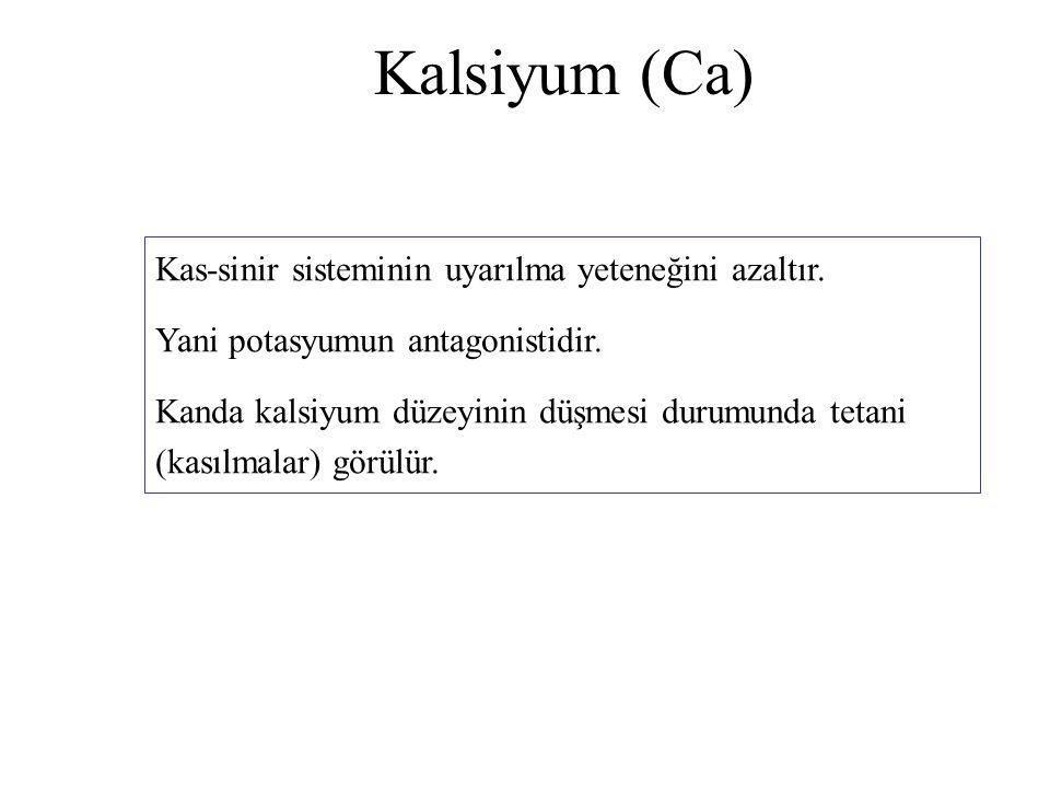 Kalsiyum (Ca) Kas-sinir sisteminin uyarılma yeteneğini azaltır.