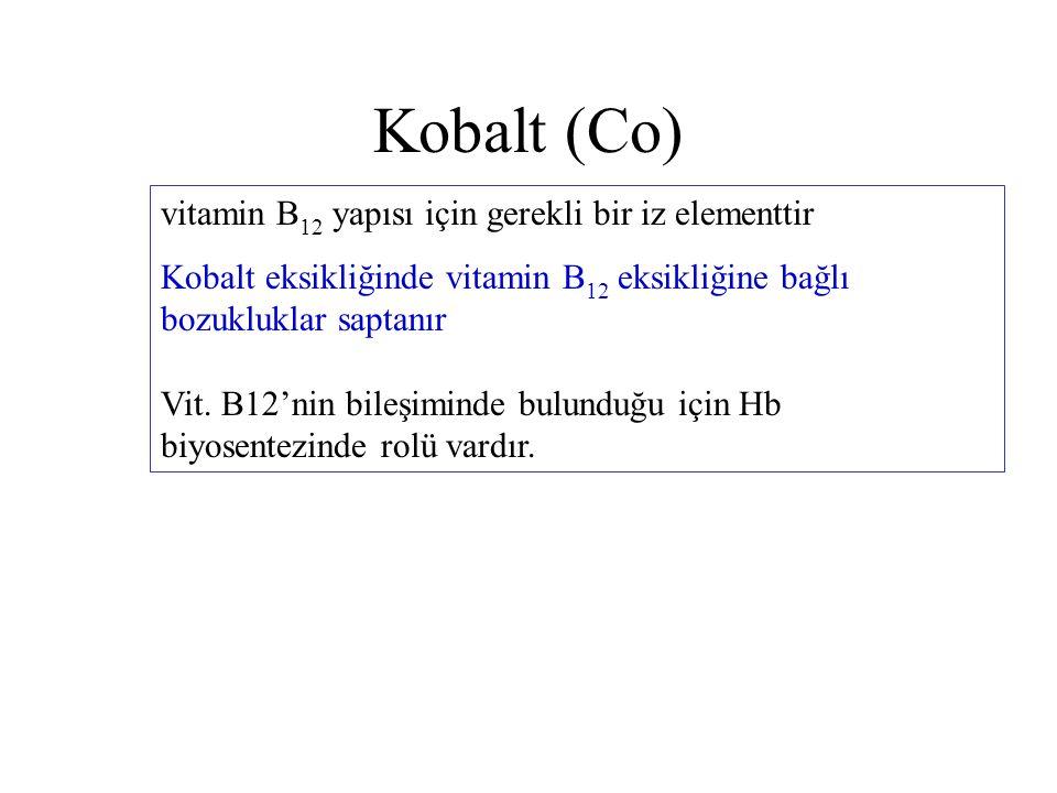Kobalt (Co) vitamin B12 yapısı için gerekli bir iz elementtir
