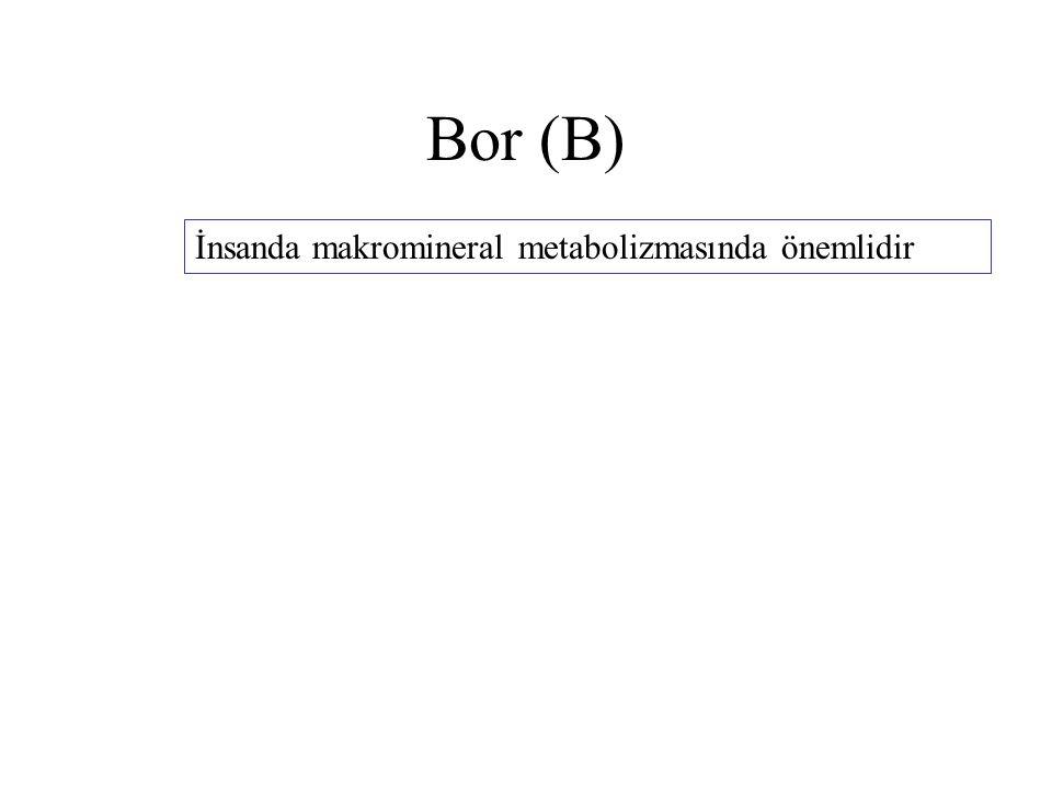 Bor (B) İnsanda makromineral metabolizmasında önemlidir