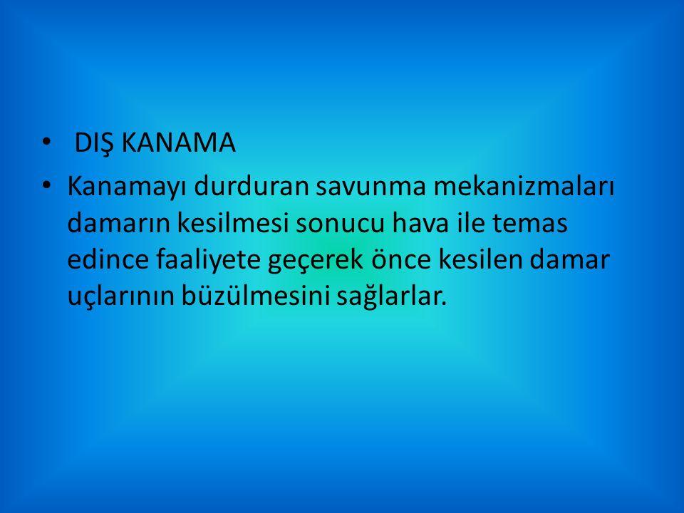 DIŞ KANAMA