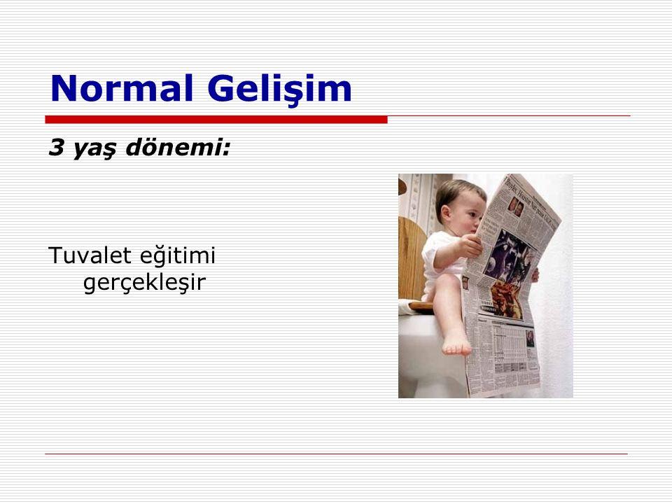 Normal Gelişim 3 yaş dönemi: Tuvalet eğitimi gerçekleşir